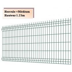 Panneaux treillis soudés Hercule Médium + H173